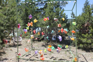 The Pinwheel Garden